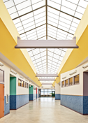 Langford Elementary Skylights