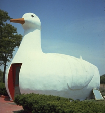 The-Big-Duck-Design-Process