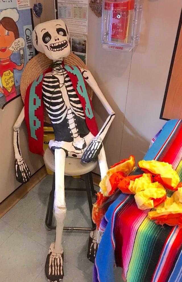 Metz Dia Skeleton.jpg