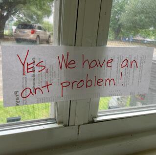 Yes Ant Problem Church Sign.jpg